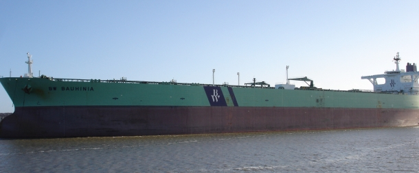 bauhinia ship